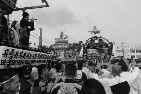 平成28年度「大神輿渡御」 (28)