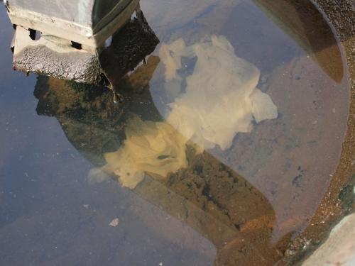 500水受けの掃除160503007