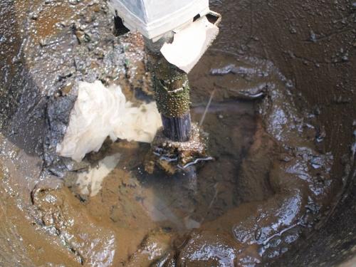 500水受けの掃除160503008