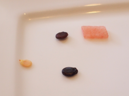 500スイカの種は何色か1607062
