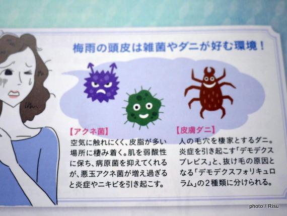 女性用薬用育毛剤マイナチュレ