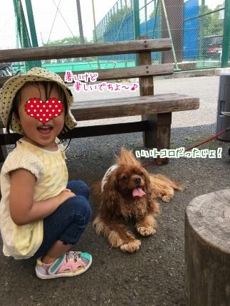 嵐丸 2016.7.7-16