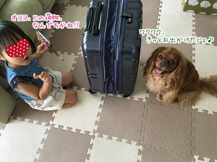 嵐丸 2016.7.27-1