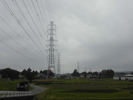 東富士線11号