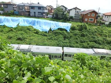 7脱線した新101系電車0823