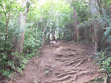15急な山道0927