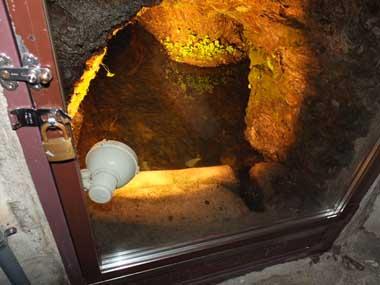 5蔵の井戸1007