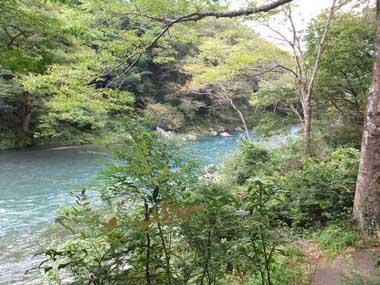 6澤乃井園から眺めた御岳渓谷1007