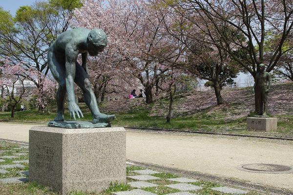 西条運動公園・桜 160411 02