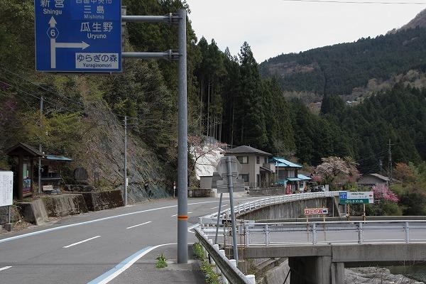 別子山・エドヒガン 160412 01