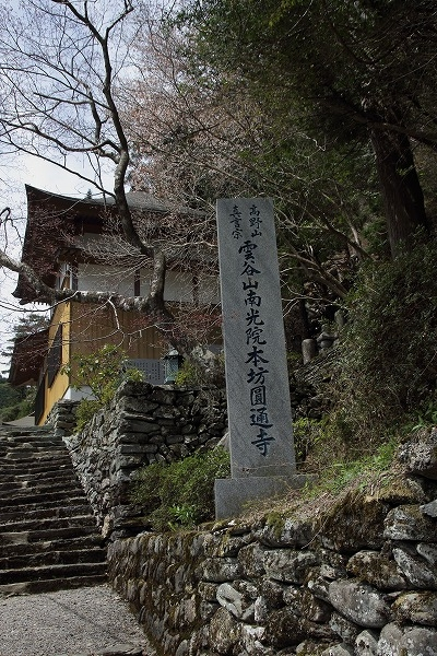 別子山・圓通寺 160412 01