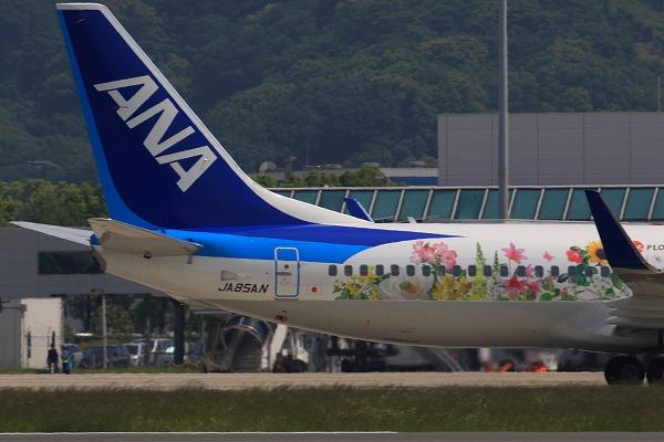 ANA B737-881 JA85AN RJOM 160519 04