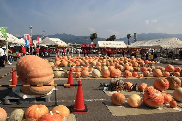 第32回どてかぼちゃカーニバル 160911 01