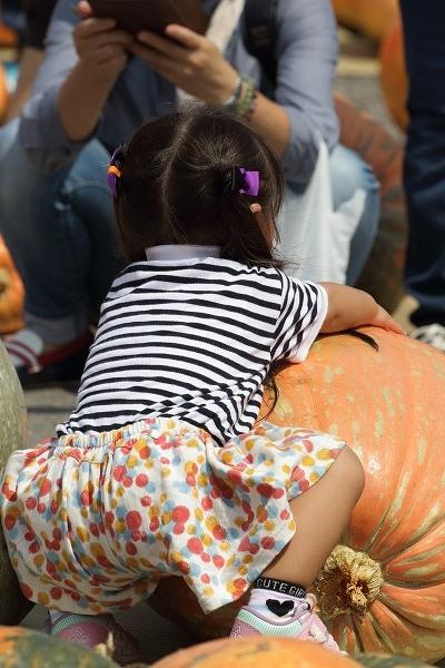 第32回どてかぼちゃカーニバル 160911 08