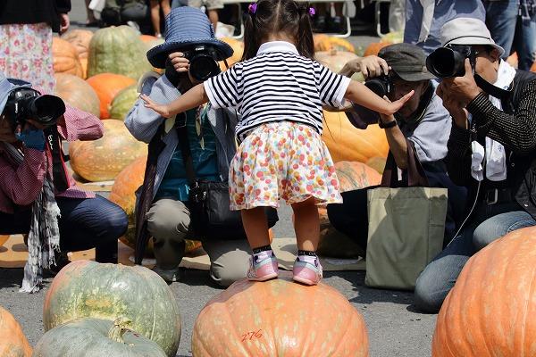 第32回どてかぼちゃカーニバル 160911 09