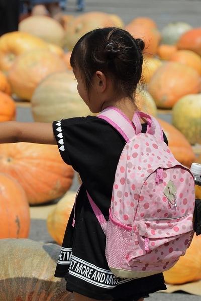 第32回どてかぼちゃカーニバル 160911 10