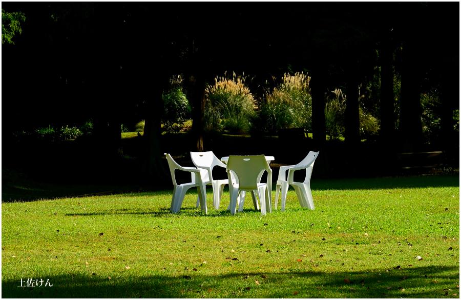 都市緑化植物園2