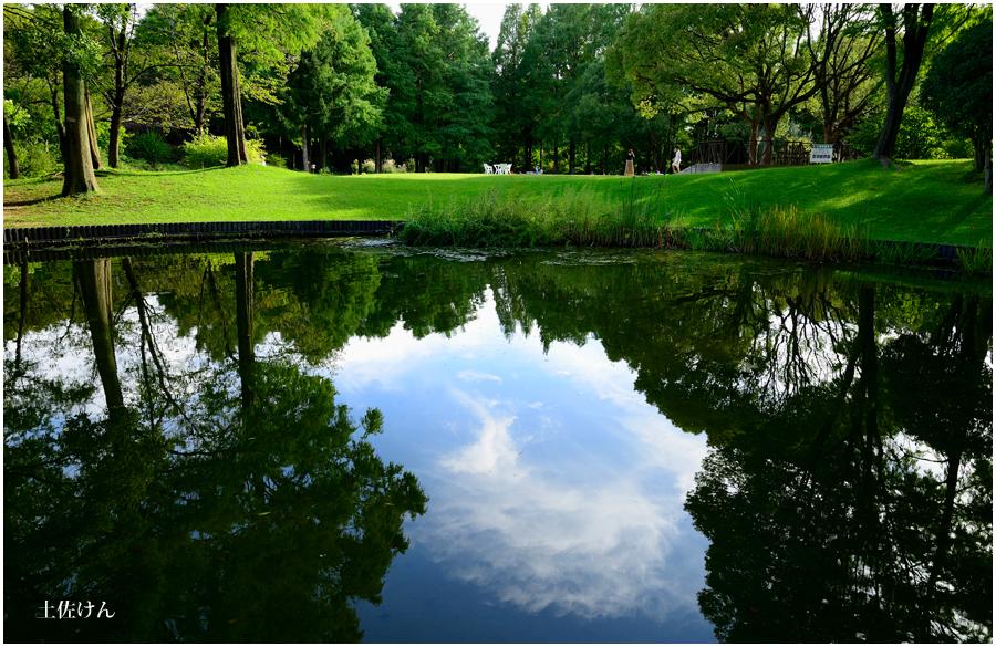 都市緑化植物園3