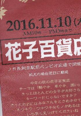 IMG_20161026_0008.jpg