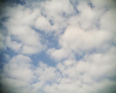 秋の雲・自然教育園:R2