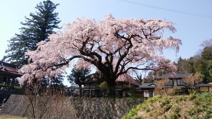 160412 長沼永泉寺