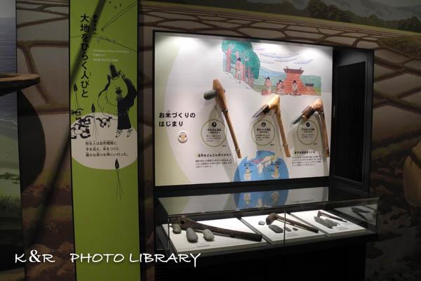 2015年10月12日兵庫県立考古博物館10