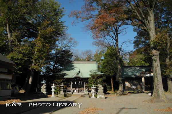 2015年11月28日有鹿神社2