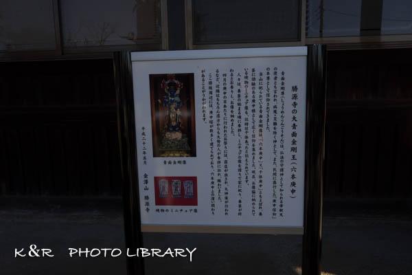 2015年11月28日勝坂遺跡18