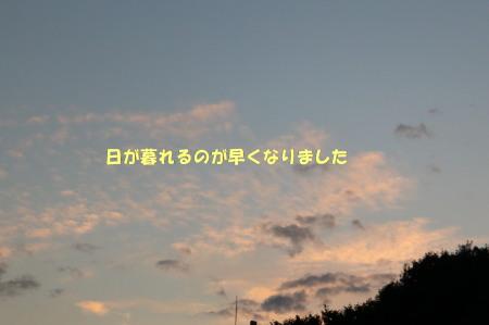 161027-4.jpg
