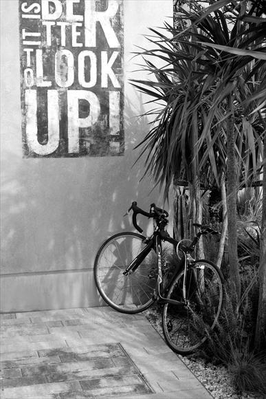 自転車のある光景-1_R
