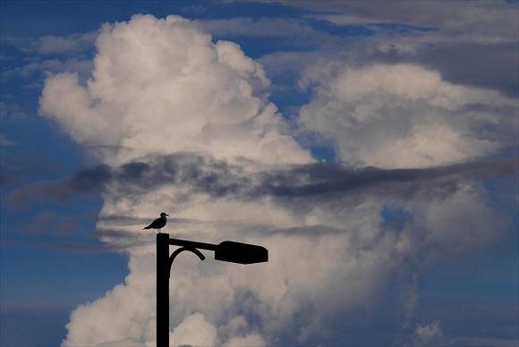 積乱雲-1_R