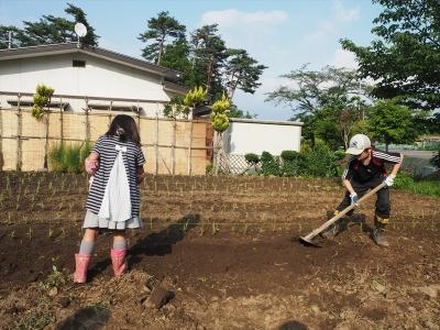 622苗植え2日目1_R2
