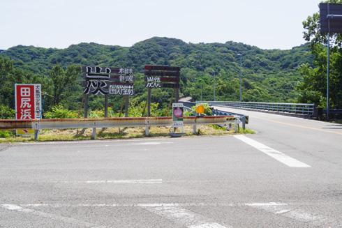 160722_01島田島古代蓮