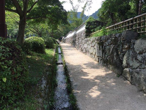 sakamoto-sandou024.jpg