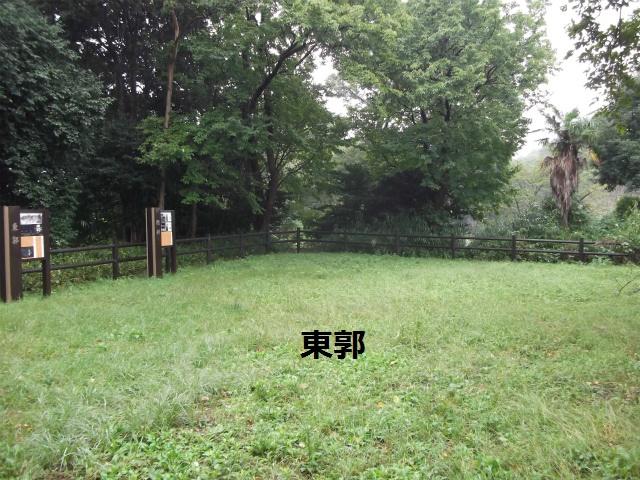 DSCF4326.jpg