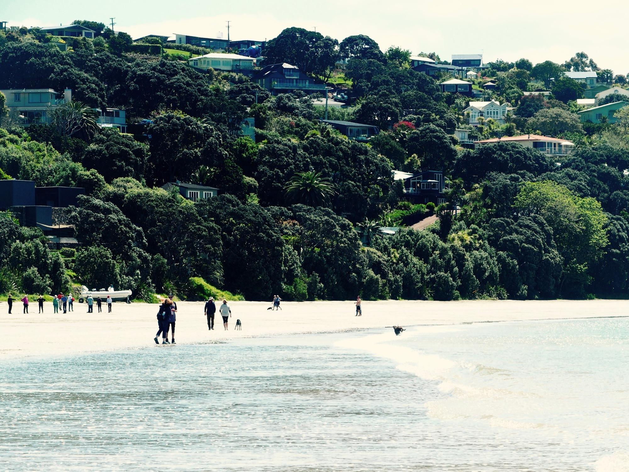 ビーチで遊ぶ人々