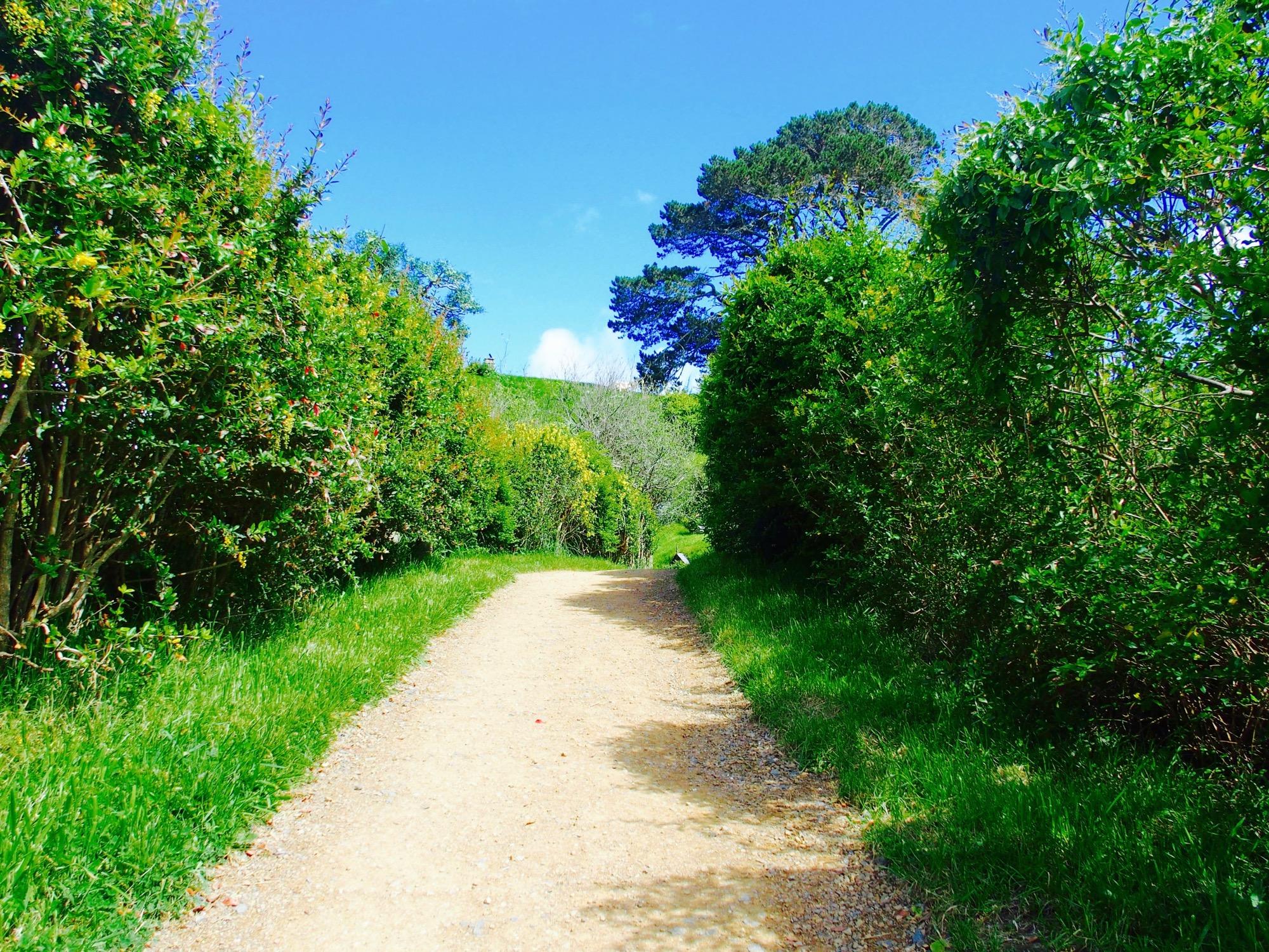 ホビット村の小道