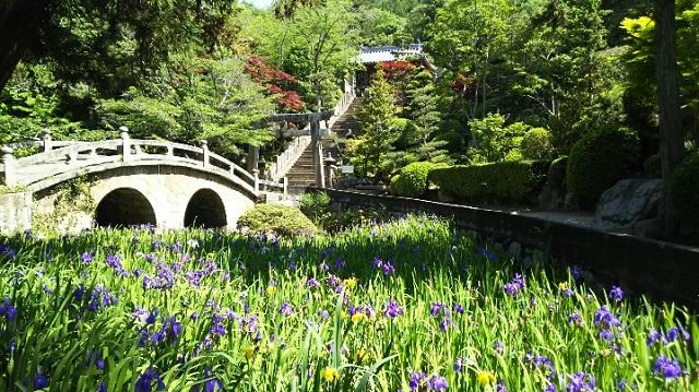 160518 菅原神社② ブログ用
