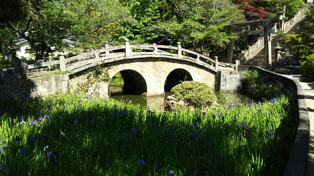 160518 菅原神社⑦ ブログ用