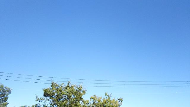 160831 NタコR② ブログ用