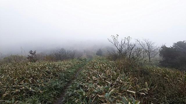 161102 岩樋山、道後山⑥ ブログ用