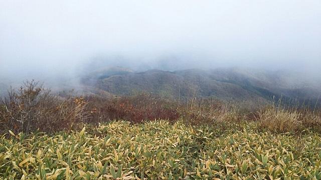 161102 岩樋山、道後山⑩ ブログ用