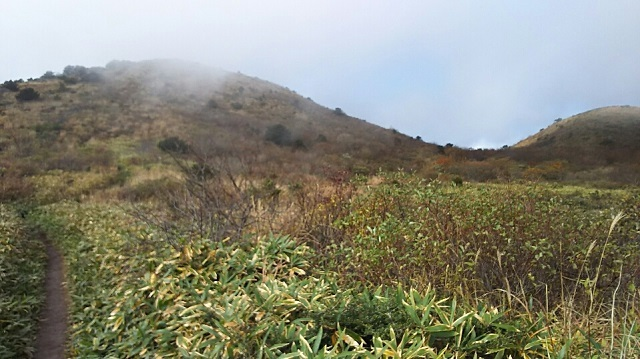 161102 岩樋山、道後山⑫ ブログ用