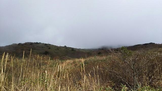 161102 岩樋山、道後山⑬ ブログ用