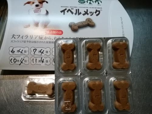2016犬フィラリア予防薬