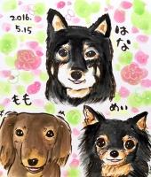 写真 2016-05-15 18 54 01