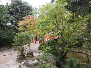 hiroshima245.jpg