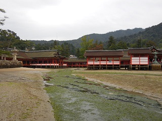 hiroshima261.jpg