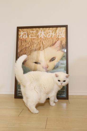 urabanashi-5763.jpg
