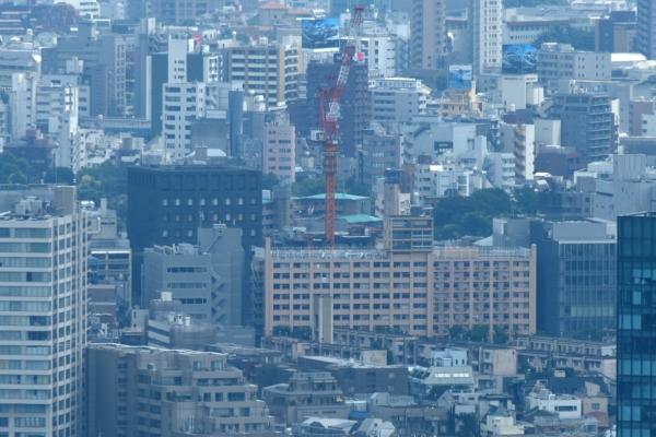 minamiaoyama16080336.jpg